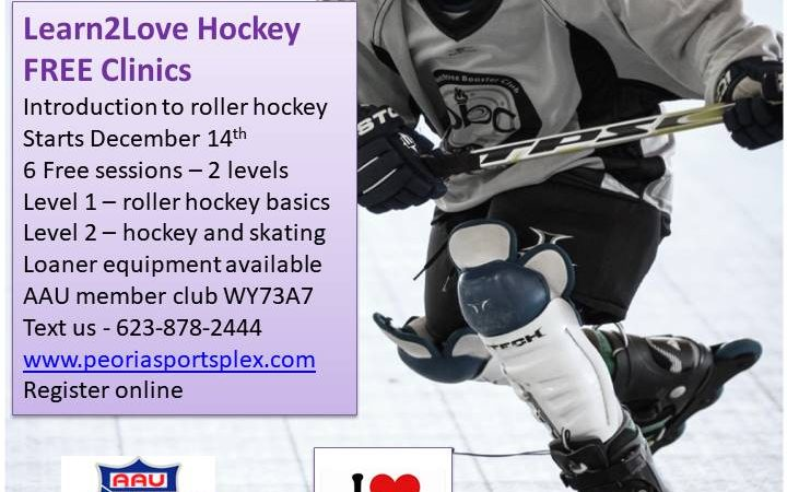 Learn2Love Hockey – Youth Clinic
